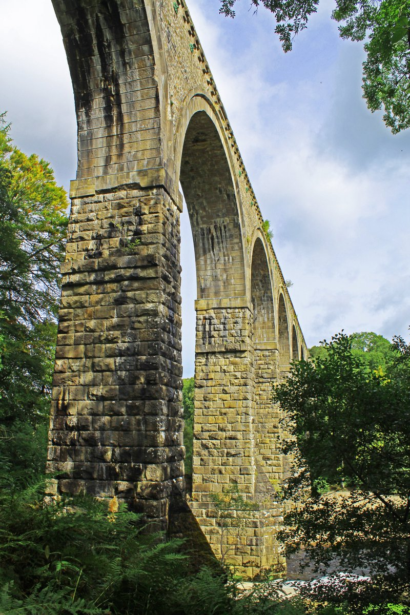 The magnificent #Lambley Viaduct on the #Alston line built over the River South Tyne in 1852. #Northumberland #NorthPenninesAONB After the recent tree felling in Hag Wood it is now visible from Ashholme 😎👍