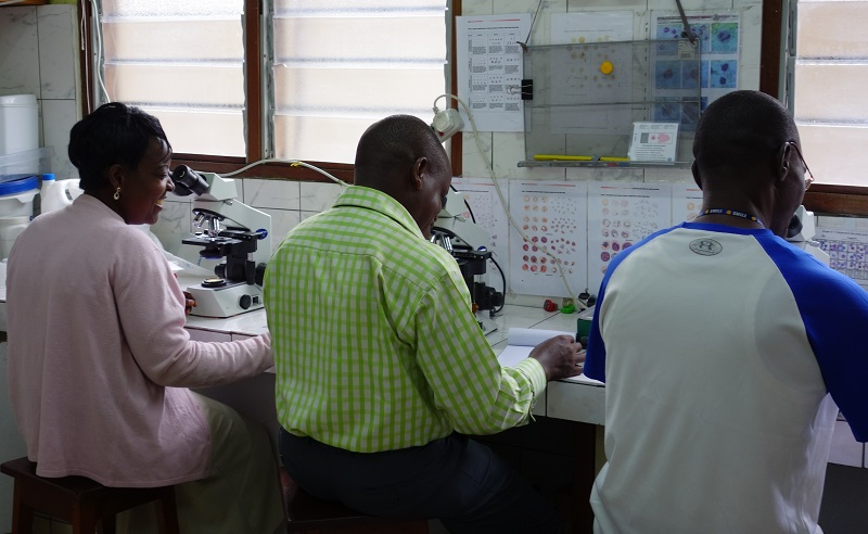 Research in @MalariaJournal describes standards for #malaria microscopy in research to promote consistency and comparability of data 🔬 https://t.co/37K3pToNA6 @MSFSci @WHO @TropMedOxford   📷Mehul Dhorda https://t.co/3KvbBRjcMl