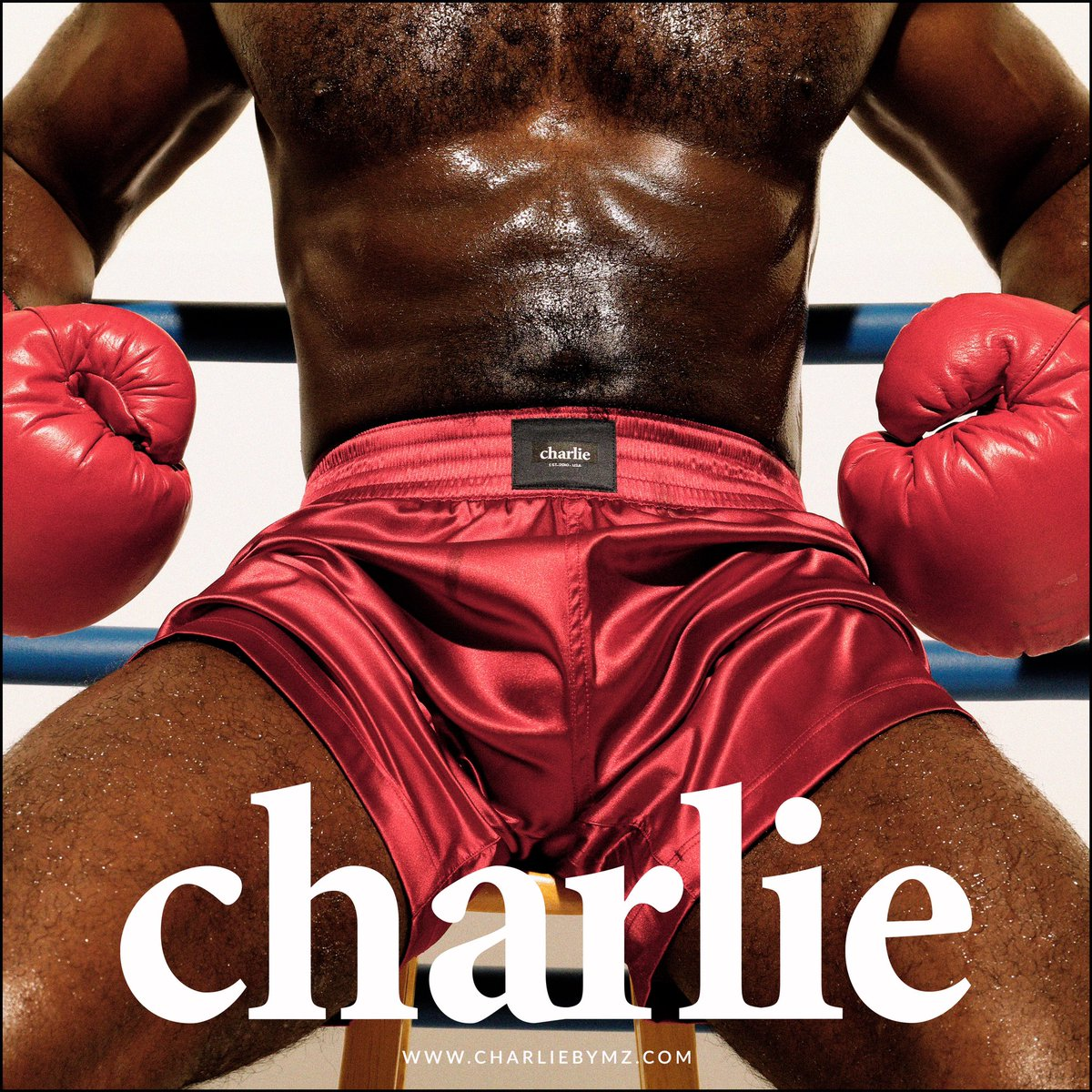 KNOCKOUT. The Charlie Fitness Boxing Series. Featuring the Kickboxing Short in red stretch satin. SHOP NOW Exclusively at https://t.co/KkePkfVjnC. #Charliebymz#charliefan#forevercharlie#charliefitness #mens #fitness #boxing #shorts https://t.co/Gdsgclkle5