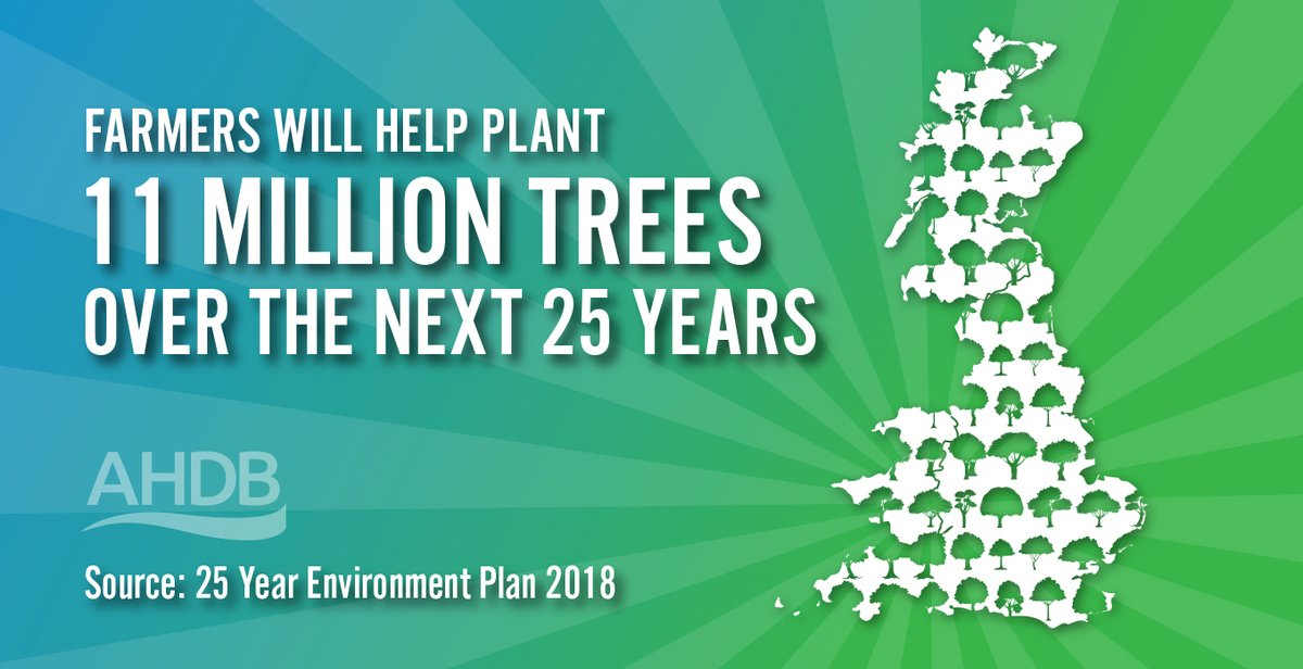 As custodians of our #countryside, farmers are working hard to create #habitats and aid #biodiversity 🌳🌲🌳🌲🌳🌲   #farminguk #farmingcares https://t.co/xfzx2m1fWO