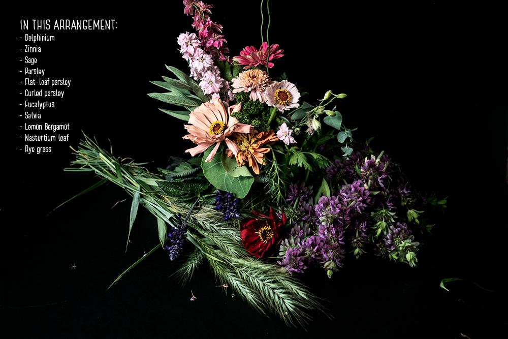 We are so excited to share a recent studio session we captured of our team, creating beautiful floral arrangements. We used flowers, herbs and even vegetables!   To learn more, click here.  https://t.co/j4nKGlyhAM  #westcoastseeds #floralarrangements https://t.co/Xn7YNtvXZL