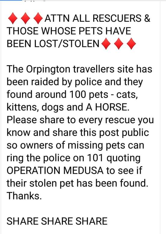 PLEASE RETWEET LETS GET SOME REUNITED 🤗 https://t.co/Wuqc8BFNbF