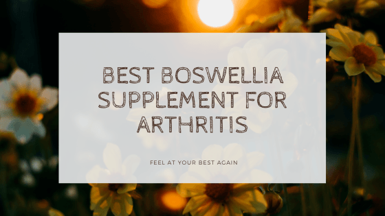 BEST Boswellia Supplements For Your Arthritis! Visit here: https://t.co/Gpzzm9VMaD #boswellia #supplements #supplement #HealthyLiving #HealthyLife #natural #HealthyEating #Healing #BackPain #backpainrelief #Inflammation #herbs #arthritis #yogagirl #entrepreneur #golfer https://t.co/twSdkMhgHH
