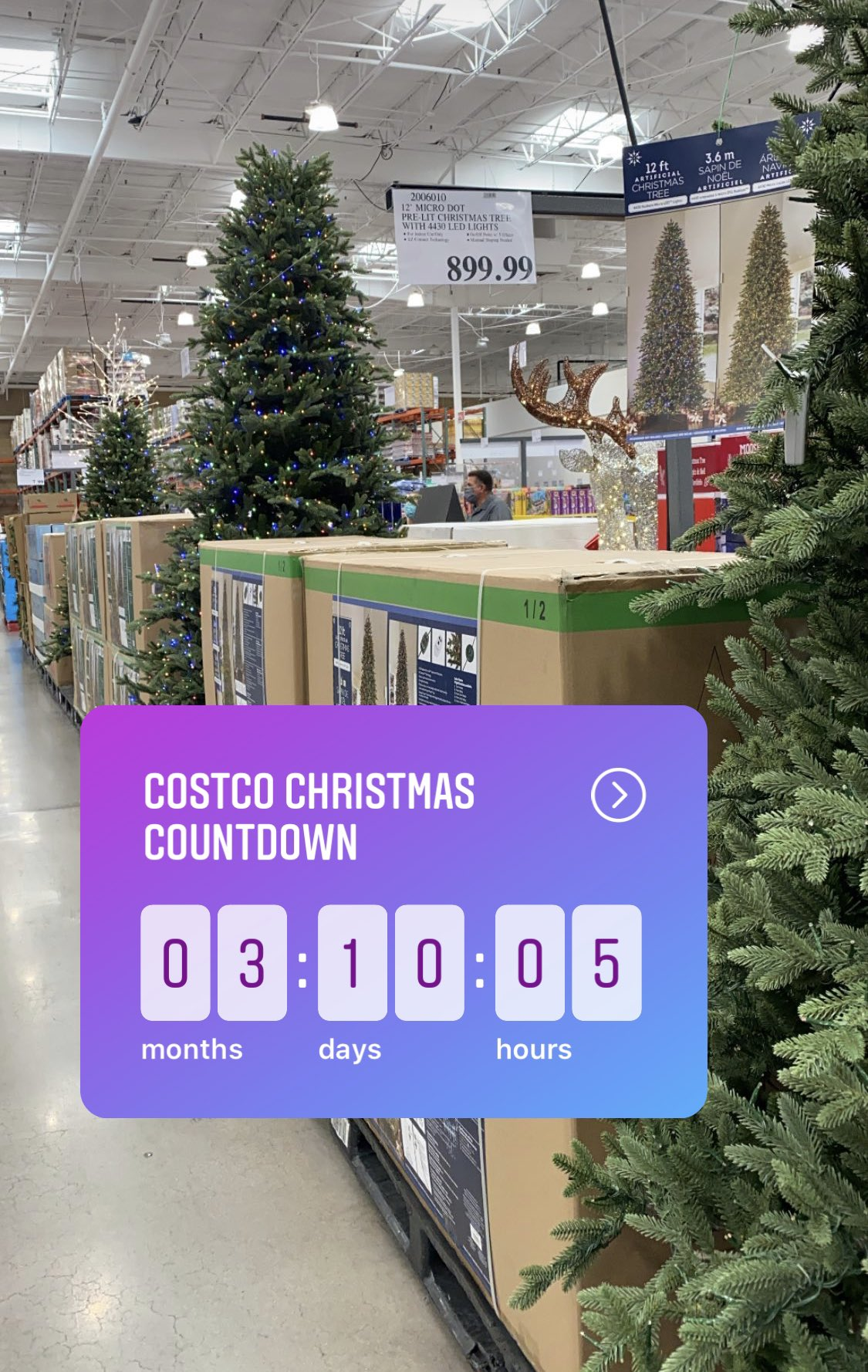 Tom Garrity On Twitter Saw This At Costco Today And I Am Not Talking About The 899 Tree Christmas