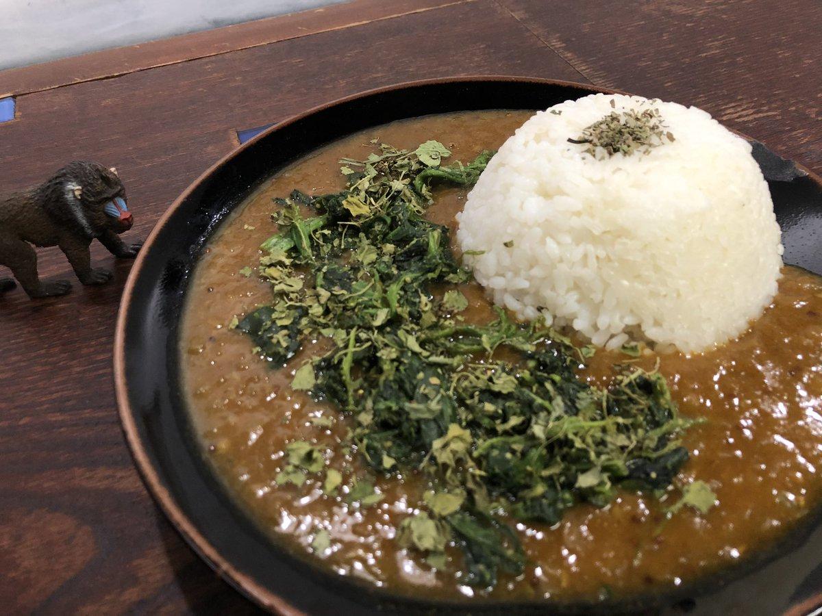 おはようございます! 本日の個人的おすすめカレーは 【緑 カルダモン×ほうれん草】です🌱🌱 とてもヘルシーで食べやすく、口の中でカルダモンの爽やかな香りが広がります。あいがけで黒キーマと混ぜながら食べるのもおすすめです。  本日もよろしくお願いします✨  #神戸 #ほうれん草カレー https://t.co/jjViGJHYeA