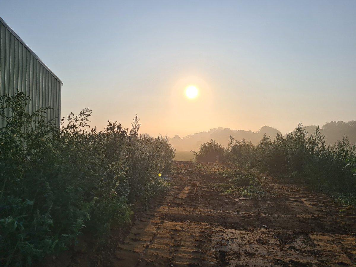 Sunrises on a beautiful morning on site #BackBritishFarming #farming #agriculture #Potatoes