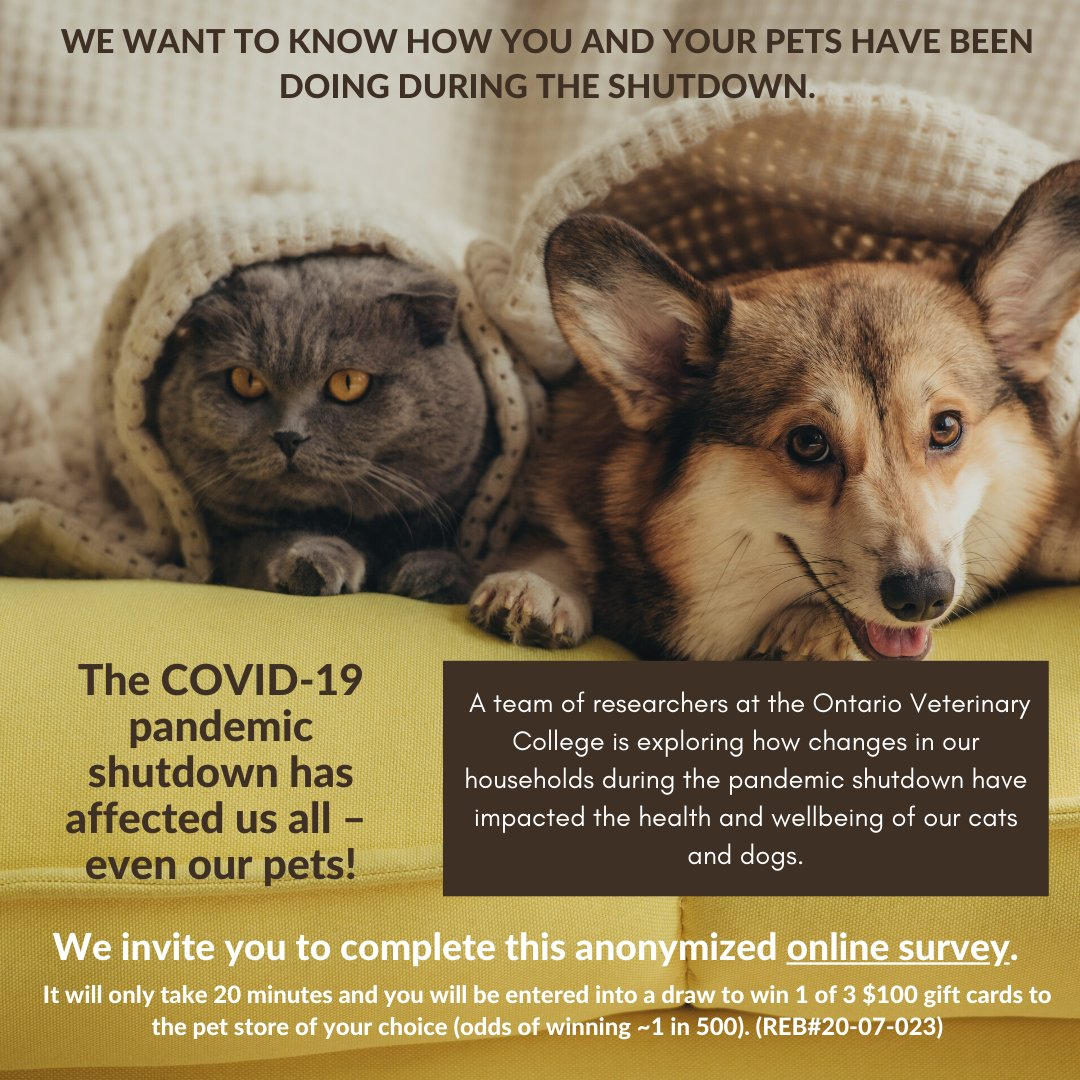We want to know how the COVID-19 pandemic shutdown in Ontario has impacted you and your pets! We invite you to take the anonymized online survey https://t.co/LrhKGPV21w (Please share widely!). @OntVetCollege https://t.co/PzYlDrRYQF