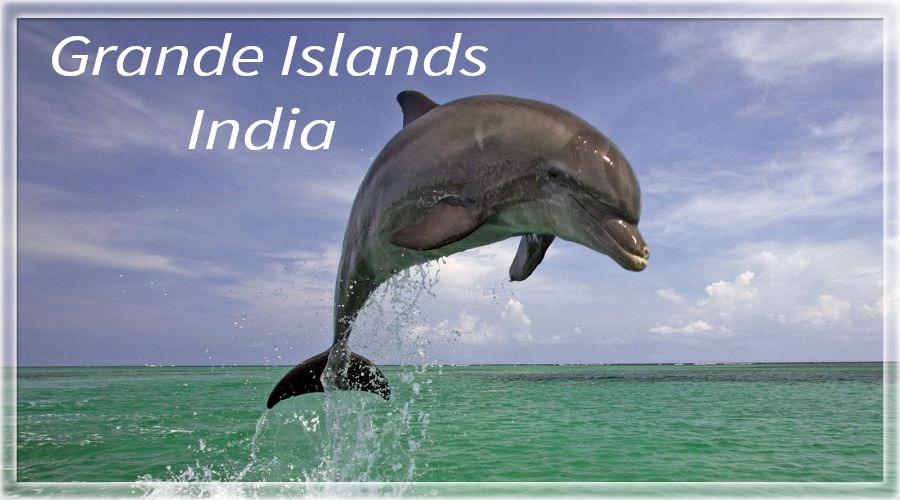 The Grande island Or Bat Island, it is one of the most exotic location for watersports like snorkeling in #Goa. Photo courtesy- goawaterworld #travel_journey #traveljourney #naturelover #enjoying #beautifulworld #closetothenature #travellover #travelseeker #blessedworld #travel https://t.co/scOkE4f6Zc