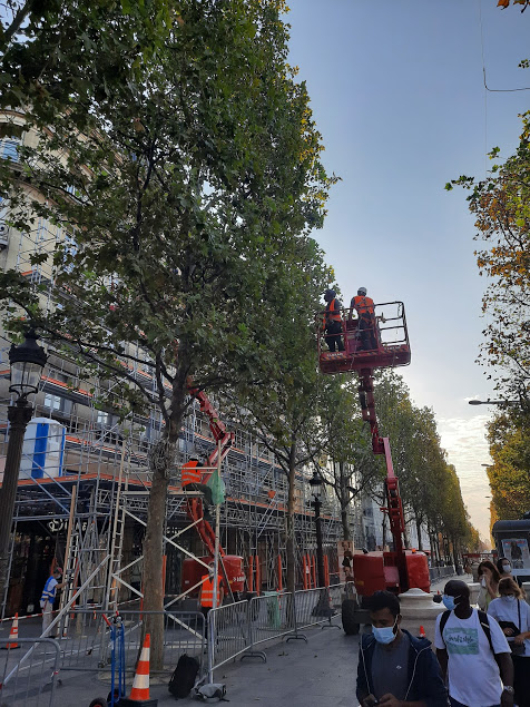 THEY'RE PUTTING UP CHRISTMAS LIGHTS IN PARIS. 2020 IS NEARLY OVER! THE END IS IN SIGHT! https://t.co/HSdwcPgHpD