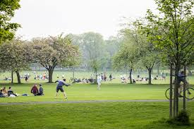 As part of our target for Edinburgh to reach net zero  by 2030 we want to establish a city-wide green network to connect our places, parks and greenspaces together #ScotClimateWeek https://t.co/PcoOJvC5QS