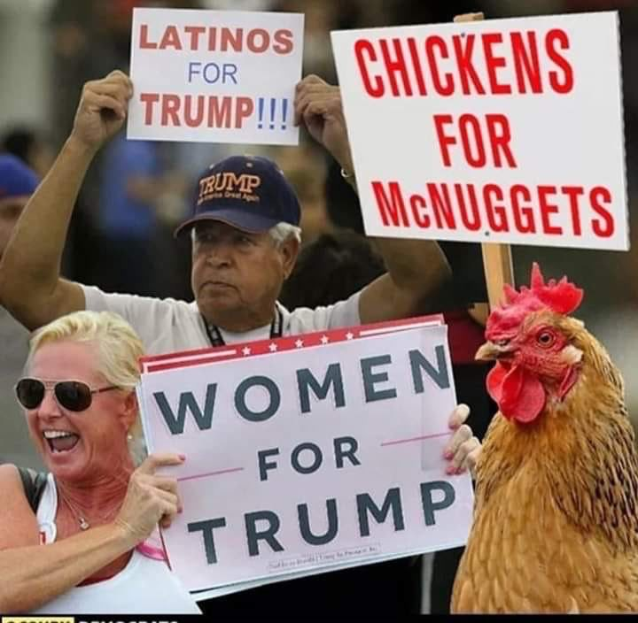 I just saw on TV that Donald Trump is leading Joe Biden with the Latino vote in Florida by 4%.  ... I gues I haven't posted this enough. https://t.co/s9D7hfkacw