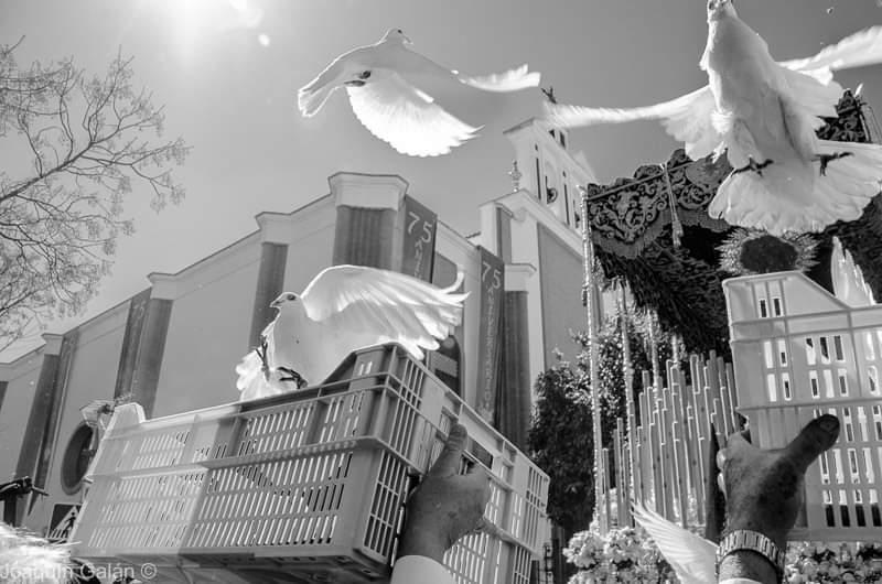.@DoloresdelCerro  El #Martes del #CerroDelAguila en el recuerdo #nostalgia  #blancoynegro #SemanaSantaSevilla #SemanaSanta #Sevilla #MartesSanto #DoloresDelCerro https://t.co/0WayGeI0zo