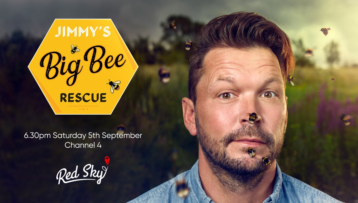📣NEW TIME! 📣Saturday 6.30pm @Channel4 for #JimmysBigBeeRescue 🐝 with @jimmysfarm 🐝 #bees #pollinators #wildflowers @screenscots https://t.co/t1QQW0hRkb