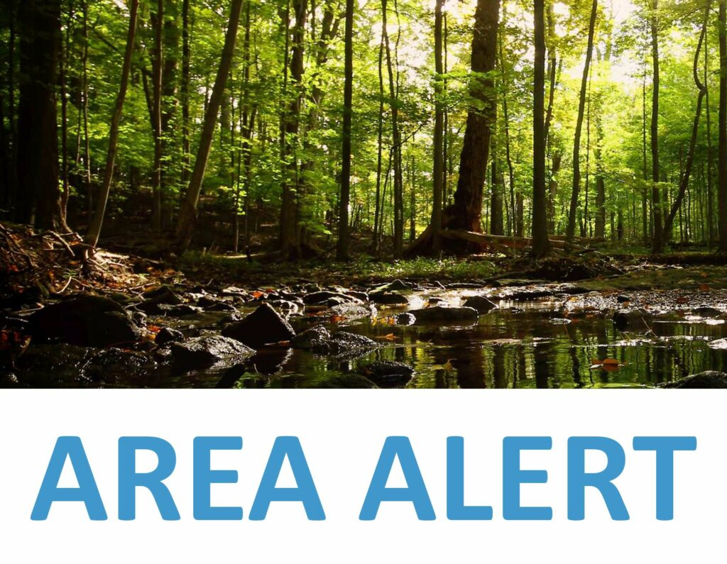 The beach and swimming area at Christie Lake Conservation Area is now closed to swimmers and animals due to the possible presence of blue-green algae in the water. https://t.co/ISti3mI7zT https://t.co/g6m1Ragvej
