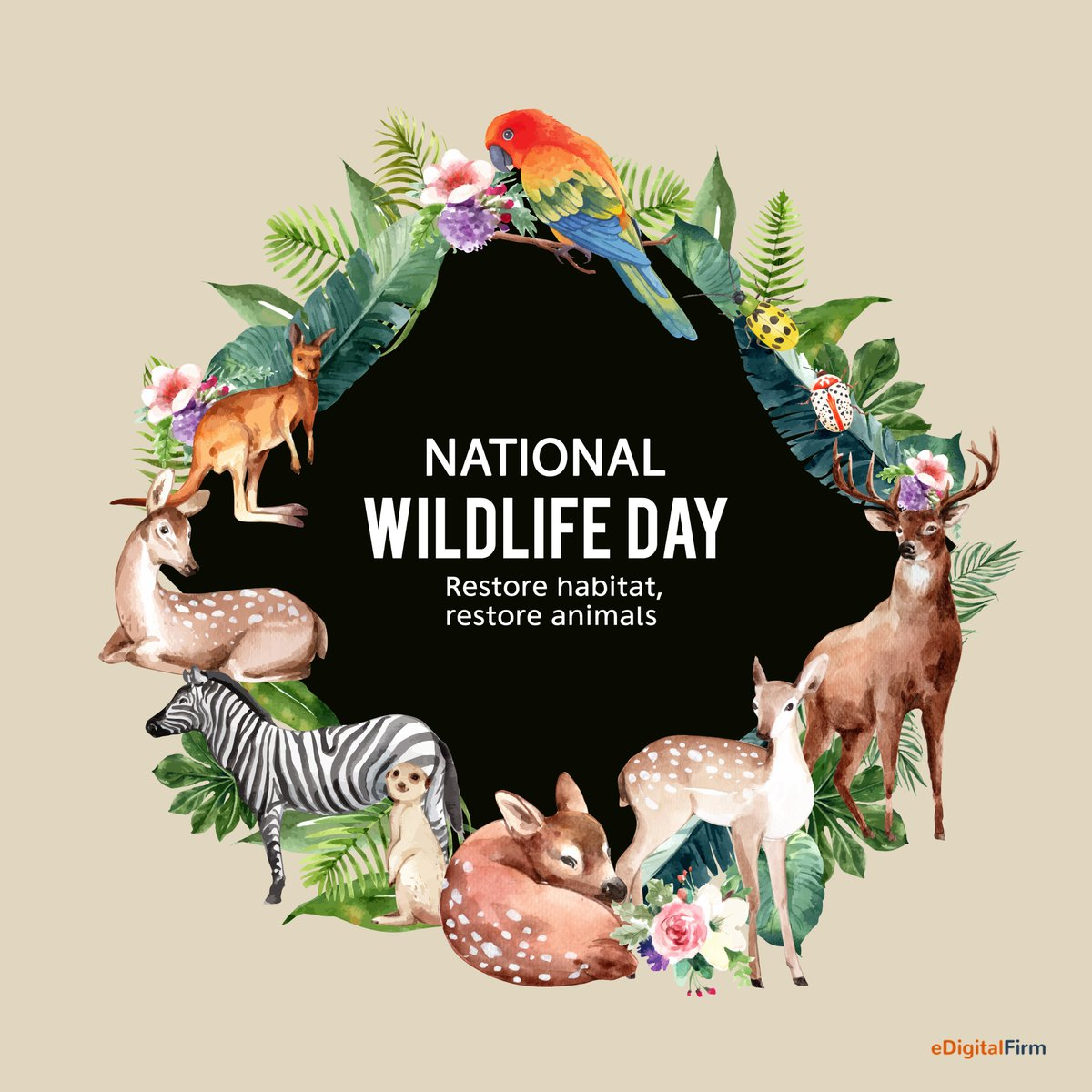 """The theme of World Wildlife Day 2020, """"Sustaining all life on Earth"""", encompasses all wild animal and plant species as a component of biodiversity. #WorldWildlifeDay #indianwildlife #wild #wildlife #wildlifeday #nature #worldwildlifeday2020 #wildlifephotography #edigitalfirm https://t.co/7fWYyrqKez"""