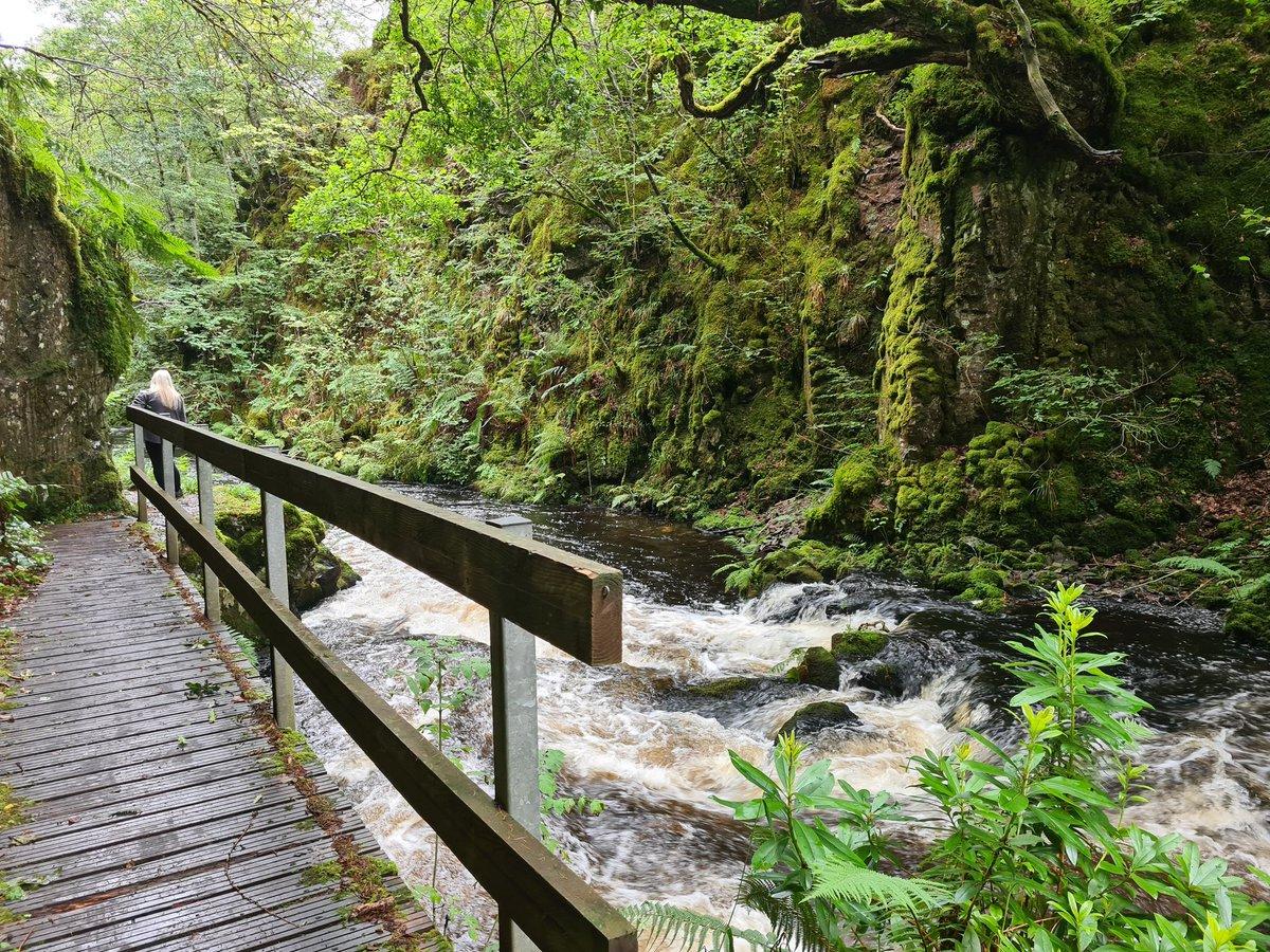 @eactourism I love the Ness Glen walk at Loch Doon 😍