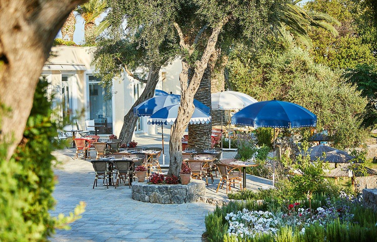 Sunday morning at oasis  #grecotelcorfuimperial   #luxuryresort #corfu #greece #luxuryliving #travel #luxuryhotel #corfuisland #infurmagazine #bestview #traveling #traveler #luxurylifestyle #trattoria #travellover #vacay #hospitality #ioniansea #ionianislands #ionian #sunday https://t.co/jsGQQqhgQh