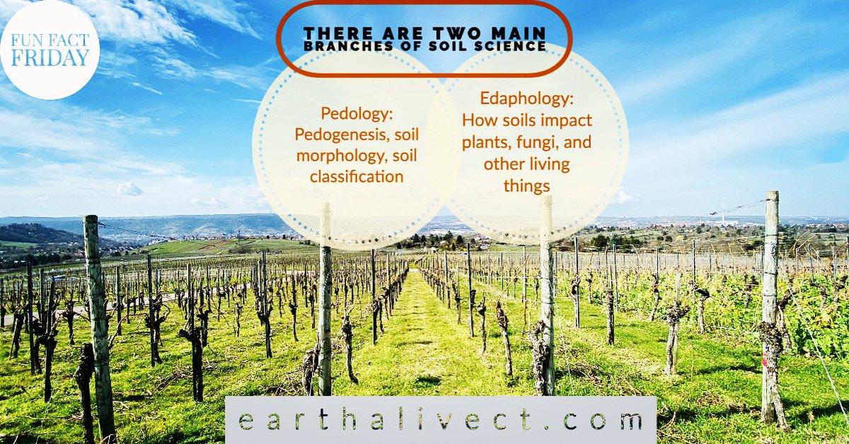 earthalivect photo