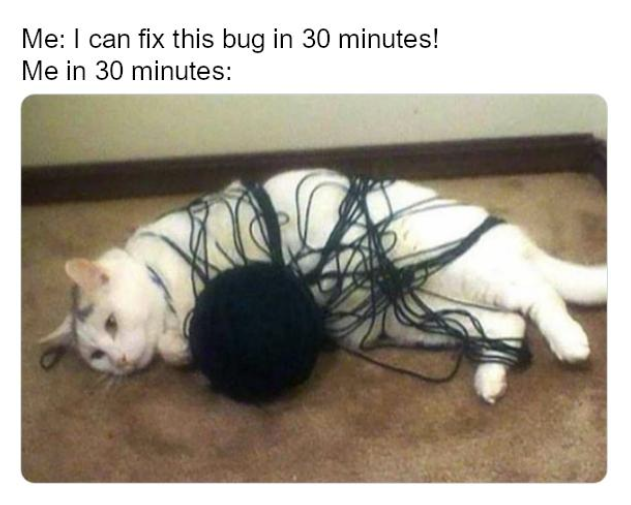 Meme title<br />Me: I can fix this bug in 30 minutes!<br />Me in 30 minutes<br />picture of a cat tangled in yarn