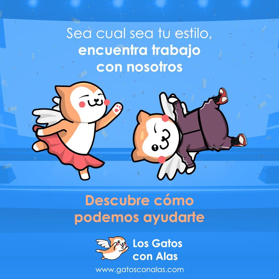 Foto cedida por Los Gatos con Alas