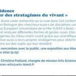 Image for the Tweet beginning: Le Service Culturel de @UBO_UnivBrest