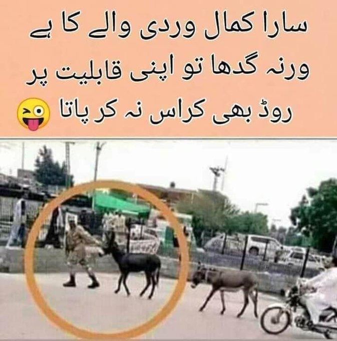 Caption for those who cannot read Urdu: Sara kamal to vardi valay ka hai varna gadha to apni kabliyat per road bhee cross na kar pata. https://t.co/Byyhup278k