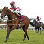 5th win for 5yo g YOUNG FIRE (Fuisse) @shanefifigray wins 7f handicap @haydockraces yesterday for @omeararacing