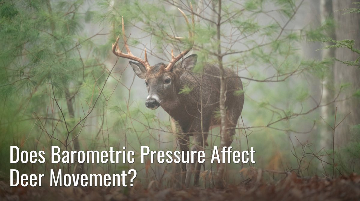 Big buck killers and scientists totally disagree on if barometric pressure changes deer movement. Here are our thoughts. #meateater #fueledbynature