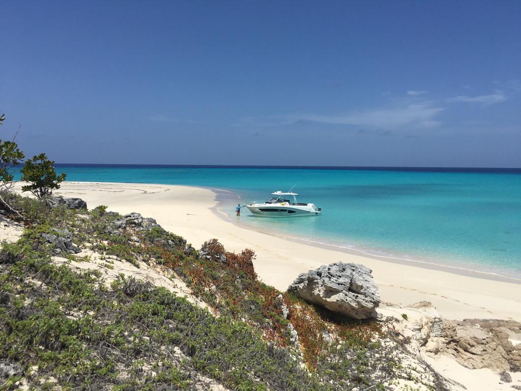 Take us there 😎 🌴 🏖️ 👙 ☀️ #jeanneau #leadertenfive #dominicanrepublic #clearwaters #jeanneauboats #jeanneaupower #jeanneauowners #leaderoutboard #jeanneauoutboards #paradise #boating #boatlife #newdestinations https://t.co/re1uNJLVRb