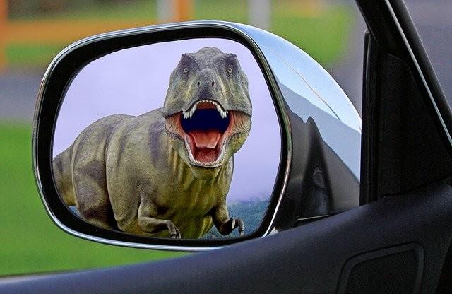 Photo By aitoff | Pixabay - via @Crowdfire    #dinosaur #mirror #wingmirror #travellingthroughtheworld #travelgoals #travelworld https://t.co/Aoqfr5UZbw