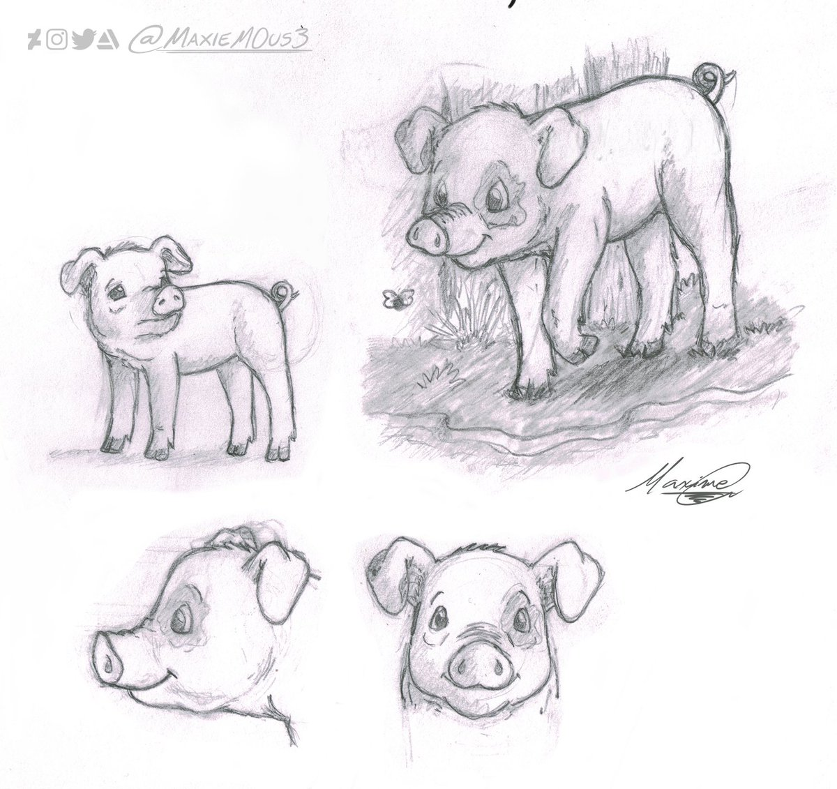Here's a forgotten and dump character concept I made back in 2015. In this concept, I imagined a pig roaming the wilderness and facing some supernatural throughout its adventure.  #characterdesign #conceptart #art #sketch #traditionalart #animal #feral #artist #artistsontwitter https://t.co/xttOZeuIDT