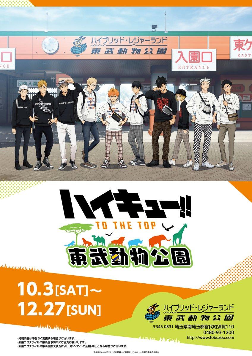 「ハイキュー!! TO THE TOP × 東武動物公園」の詳細を大公開!10/3(土)から開催する本イベントでは新規描き下ろしイラストを使用したオリジナルグッズの販売だけではなく、フードコラボ、ゲームコラボ、コラボ入園券、スタンプラリーなどをご用意しております!  event.amnibus.com/haikyu-tobuzoo/   #hq_anime