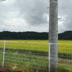 itika_chanのサムネイル画像