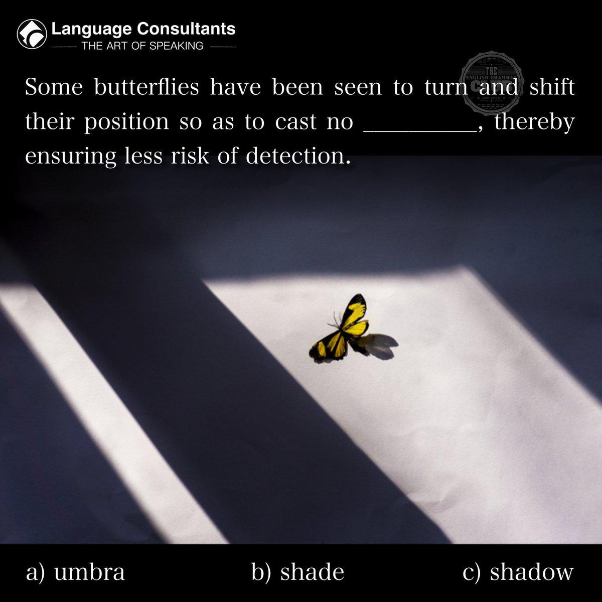 #english 🇬🇧 #englishlearning #learnenglish #language #butterfly #butterflyworld #butterflywings #butterflylovers #butterflygarden #butterflies🦋 https://t.co/ybrsS4PqXG
