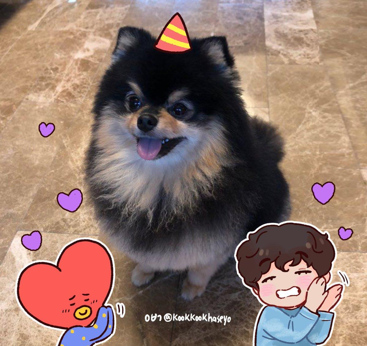 #연탄이는_아미들의_귀염탄 #태형이와_연탄이는_3년째_ing #YeontanSelcaDay #RockstarTannie #3YearsWithYeontan 탄이 생일 축하해용☺️❤️