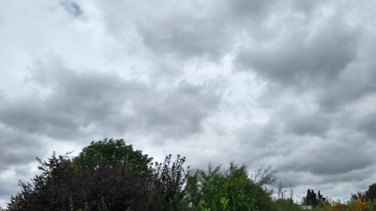 @AtmosScience @NERCscience @WHO @RMetS @AtmosChemYork @UNEP Cloudy day here in South Oxfordshire.  Plant more trees 🌳 Grow more plants 🌱 #WorldCleanAirDay #InternationalDayofCleanAir https://t.co/MHSUeI2U3b