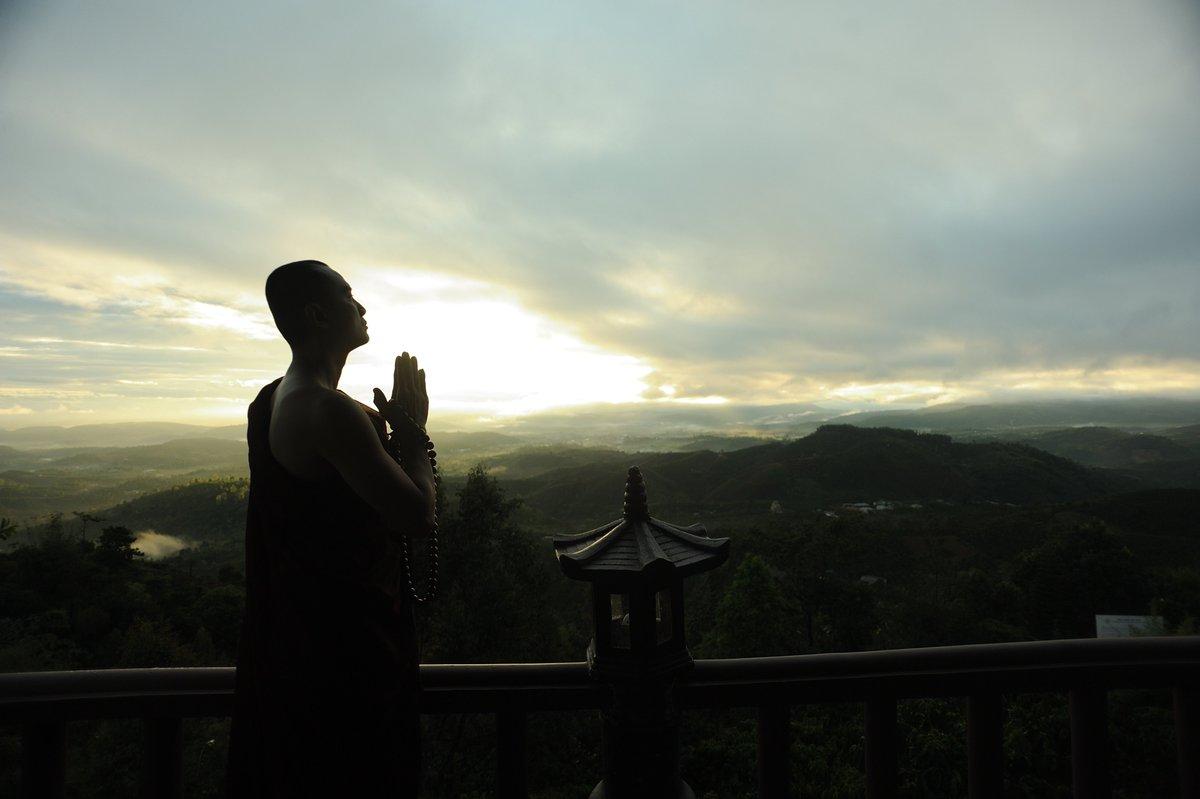 """""""S'abstenir de tout #mal, #cultiver le #bien, #purifier son #esprit, voici l'enseignement des bouddhas."""" - Le #Bouddha #Citation #Bouddhiste https://t.co/82xOO8RfZv"""
