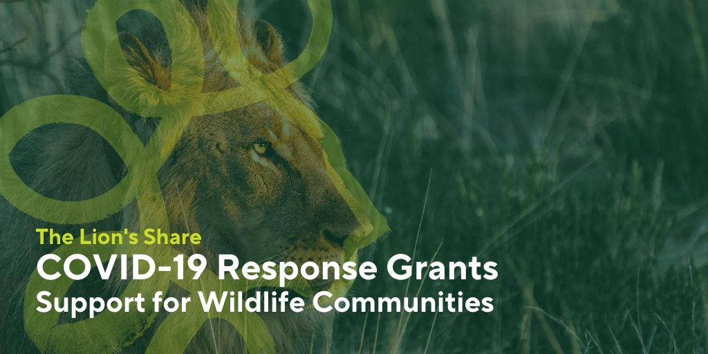 Tomorrow we will announce #COVID19 response grants to support communities in wildlife-rich areas to withstand this current pandemic & future global shocks.  Thank you to our partners who have helped contribute to saving wildlife each time an animal image is featured in their ads. https://t.co/9EFcAhsoK2