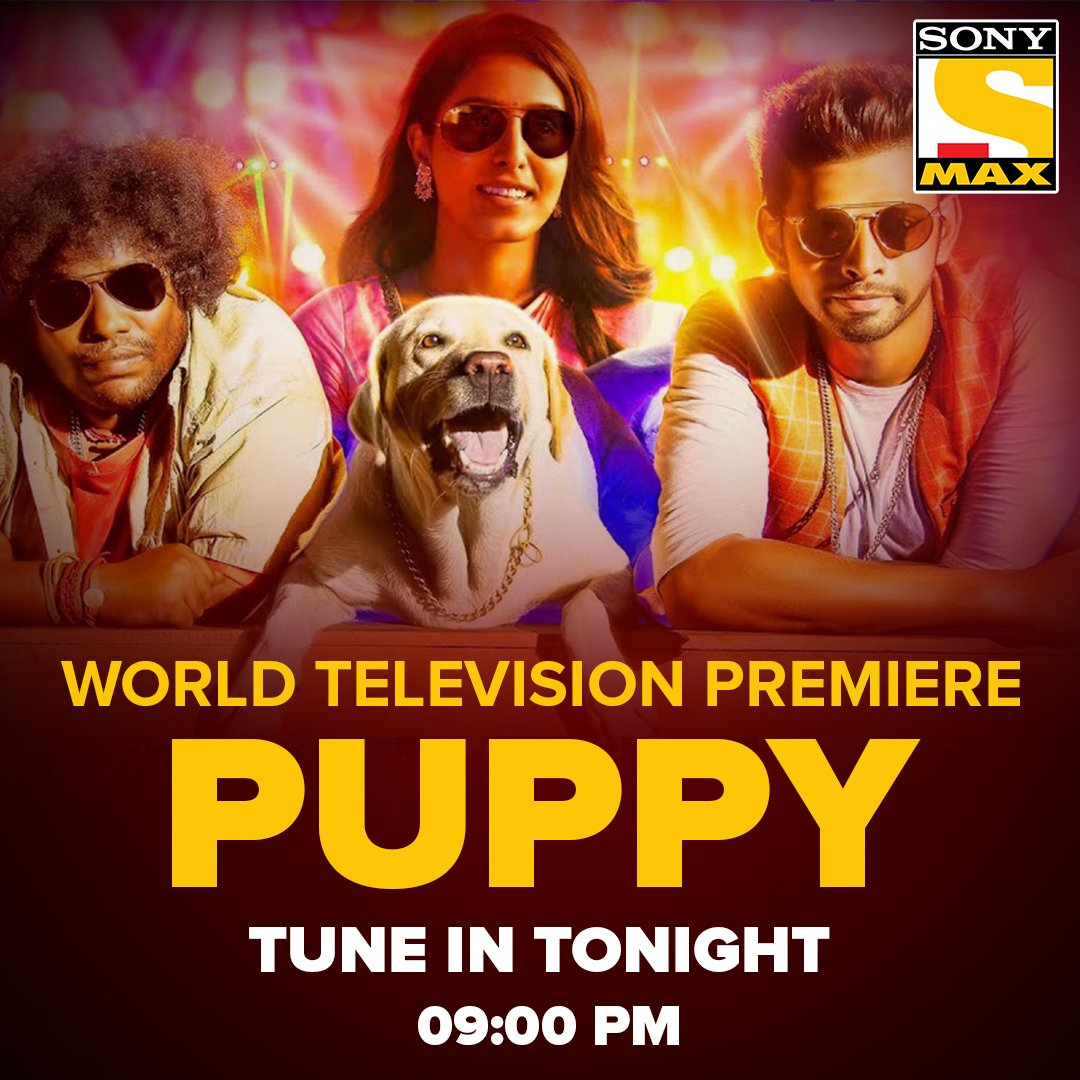 #Puppy Hindi Dubbed World Television Premiere Tonight 9PM On @SonyMAX  @iamactorvarun @SamyukthaHegde #MurattuSingle @dharankumar_c @VelsFilmIntl @SakthiFilmFctry @DoneChannel1 @RJVijayOfficial @iYogiBabu @Ashkum19 @nattu_dev @shiyamjack @PradeepERagav https://t.co/5T6hxetAry