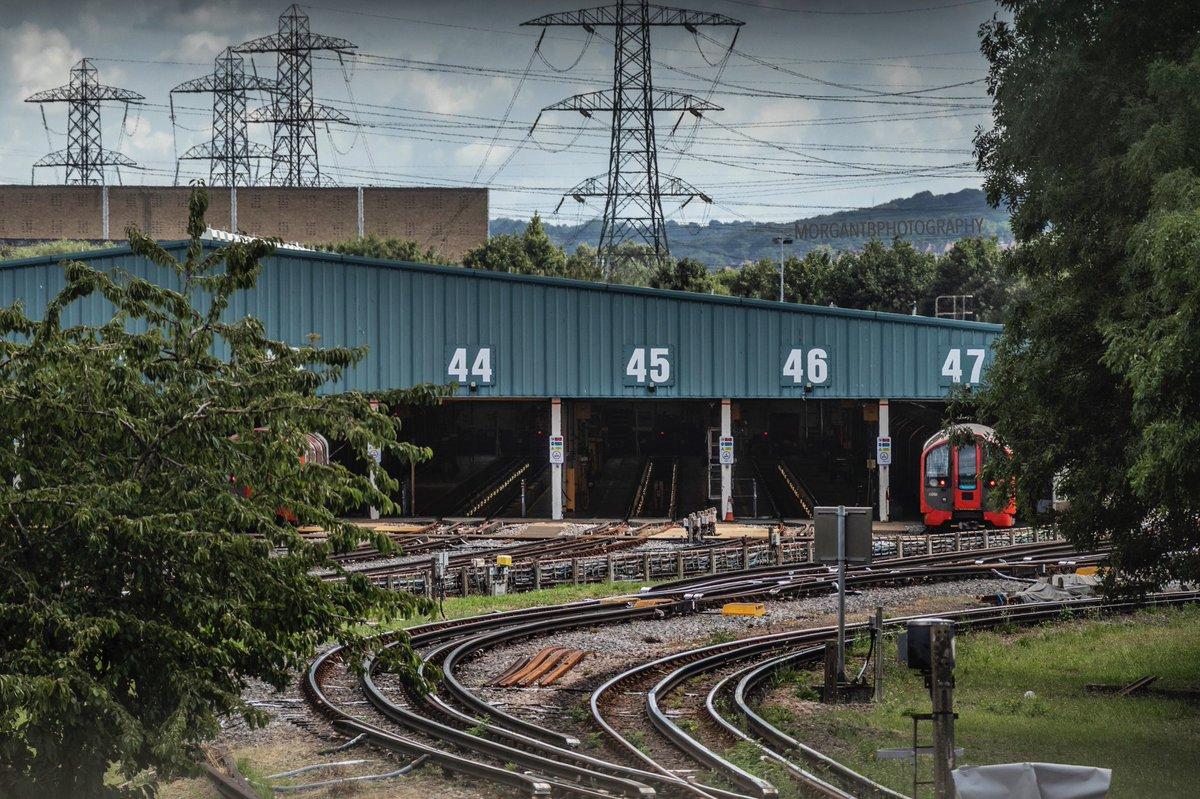#trains #train #railways #trainspotting #railway #railroad #rail #trainspotter #railfan #photography #railfans #trainstagram #trainphotography #ukrailscene #trainstation #trainphoto #landscape #victorialine #londonunderground #londonundergroundphotography #tracksides #traintracks https://t.co/Z4JMzzuKzx