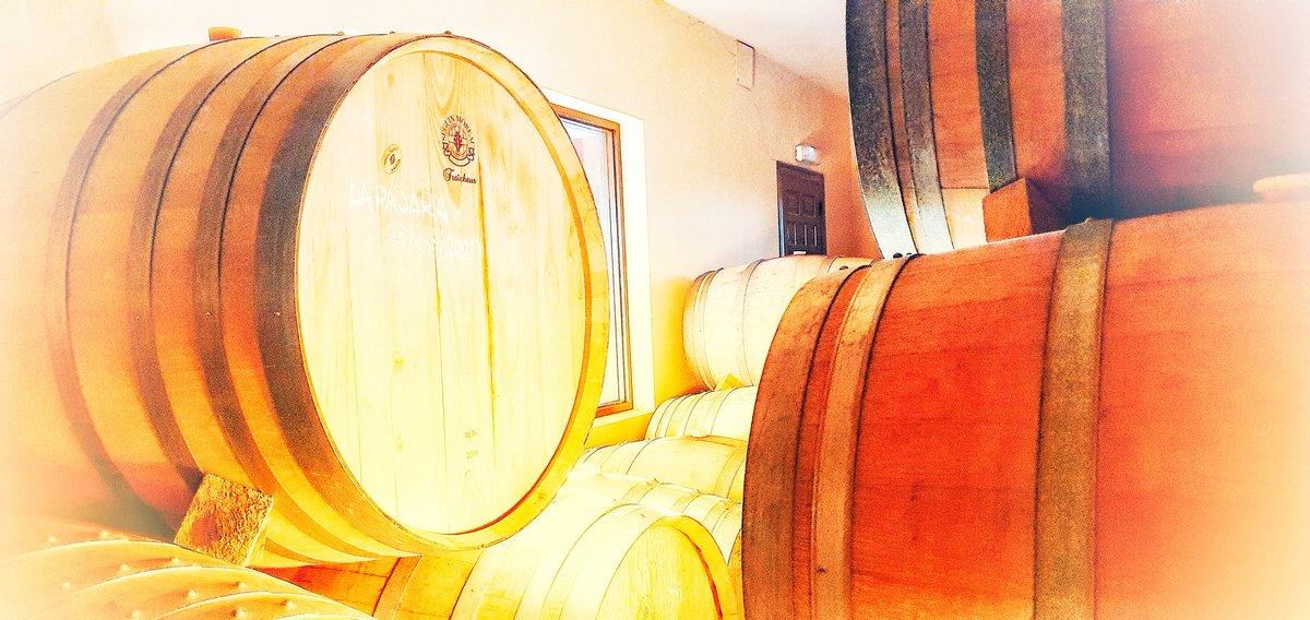 Alea iacta est. #lapajara 2020. #albilloreal #vinossierradegredos @VinosdeMadridDO #artesanía #Madrid https://t.co/8qsEEiVGjt