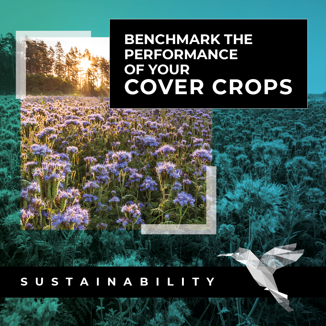 Planting cover crops is a decision made for a multitude of further reasons, but how will you evaluate the success of your cover crops? Hummingbird Technologies will give you the accuracy of benchmarking you've been missing. Contact us to learn more: https://t.co/wfbSbuMcuw https://t.co/flXIr3DPze