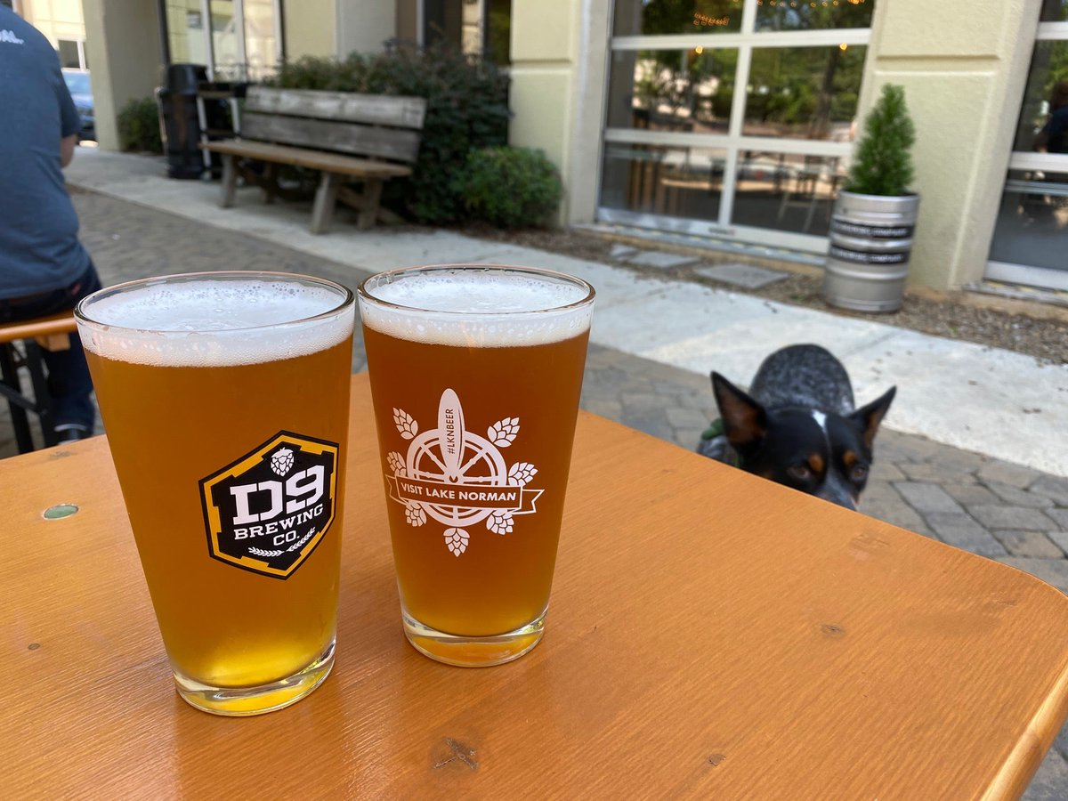 First time here! #beer photobomb by our dog #Reedy. With @jnencetti (at @D9Brewing Company in Cornelius, NC) https://t.co/P3Ci5wd1Ve https://t.co/GZwnnDKn3C