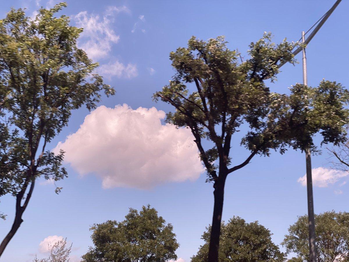 여기 세트장이지... 이거 트루먼쇼지... 나 빼고 다 연기하는 거지...... 아니고서는 구름이 저렇게 소품 같을 수 없어 #김도연쇼 #하늘봐요 #키링 ❄️ https://t.co/IwFCqZUsel