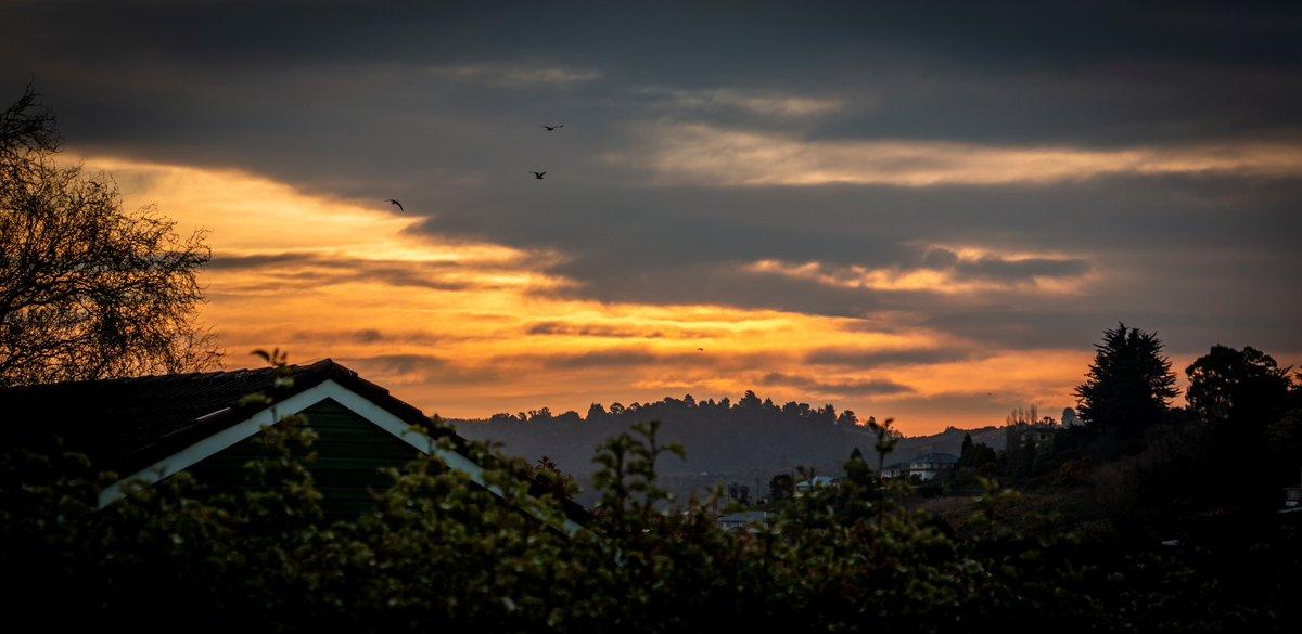 Sunset over Dunedin. Or the Eye of Sauron.