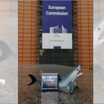 Image for the Tweet beginning: 🇪🇺Member States meet @EU_Commission @EU_MARE