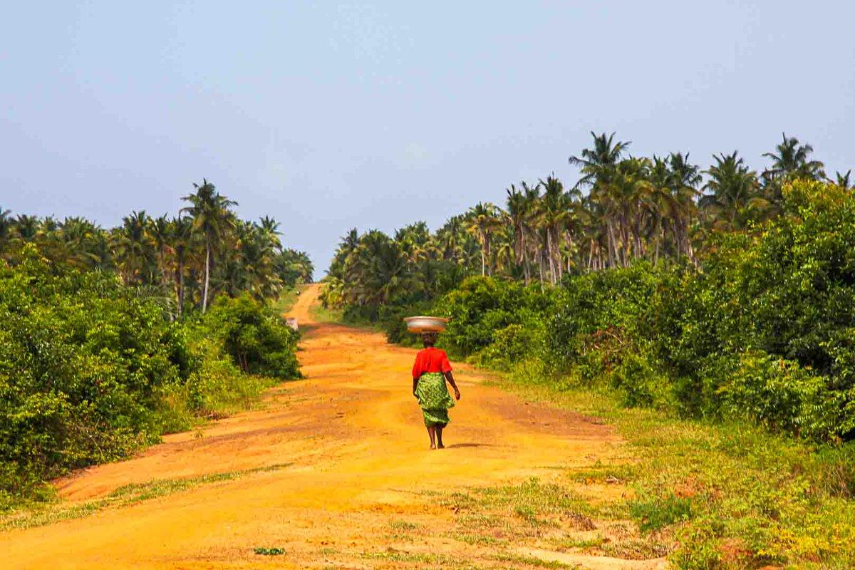 The red ochre dirt roads of Africa. Magical!  #MeetAfrica #SpreadPositiveNarrativeAboutAfrica #travelafrica #seeafrica #dirtroads https://t.co/MBH4rCjlrm