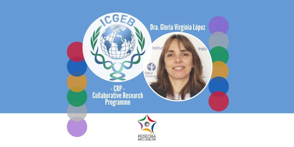 ¡Buenas noticias! @ICGEB aprobó el proyecto presentado por la Dra. Gloria Virginia López #InvestigadoraPEDECIBA del @IPMontevideo y @QuimicaUruguay El CRP de ICGEB apoya proyectos que aborden problemas científicos originales, de especial relevancia para el país y la región #Hilo https://t.co/RFsoQHtxLh