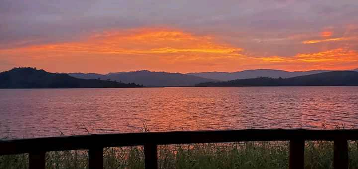 #visituganda #luxury #travel #beatiful #beatifulplaces #beauty #wilderness #sunset #sun #Sundowns #SundayMorning #gorillatracking #UnitedKingdom #UnitedStatesofAmerica #Brazil #Germany #southafrica #chimpanzee #California book now at kitanda@infocom.co.ug https://t.co/wuoqcRx0ET