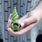 Image for the Tweet beginning: #cannabis #marijuana #weed Drone drops